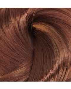 Chestnut copper